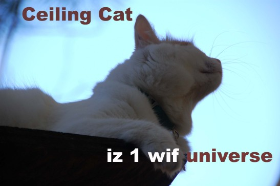 Ceiling Cat one with universe