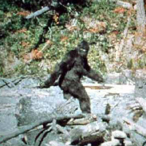 The bigfoot dna real science and a skeptical nightmare the the bigfoot dna real science and a skeptical nightmare the weiler psi sciox Images